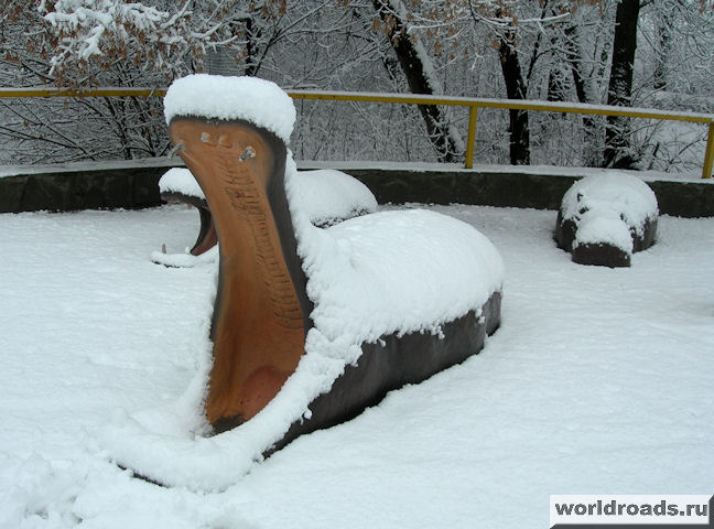 Семья бегемотов на снегу