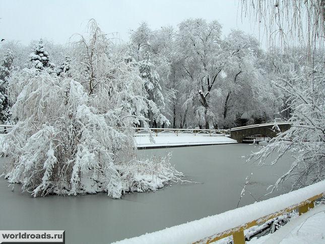 Ростовский зоопарк зимой