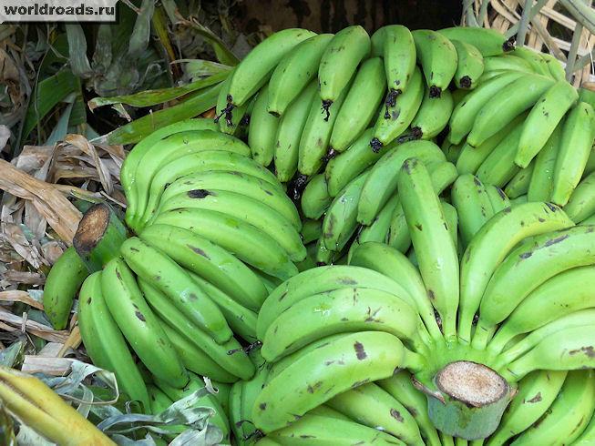 Бананы тонкие