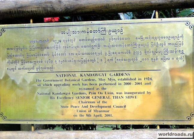 ботанический сад Kandawgyi