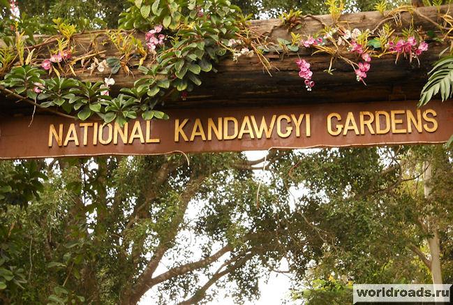 национальный ботанический сад Kandawgyi