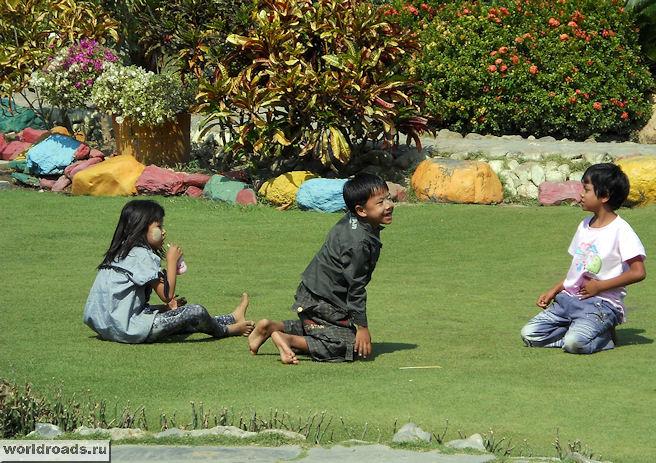 Дети на траве в зоопарке