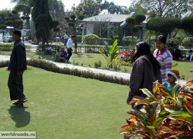 Посетители на газонах