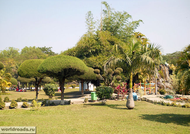 Растительность зоопарка