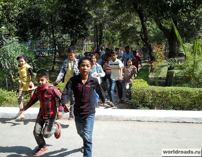 Дети на экскурсии в зоопарке