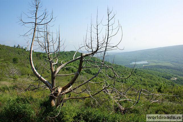 Пейзажи горы Нексис