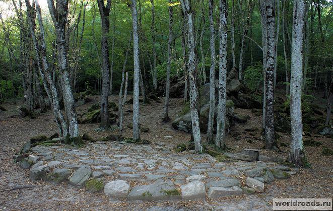 Каменная площадка в лесу посёлка Возрождение