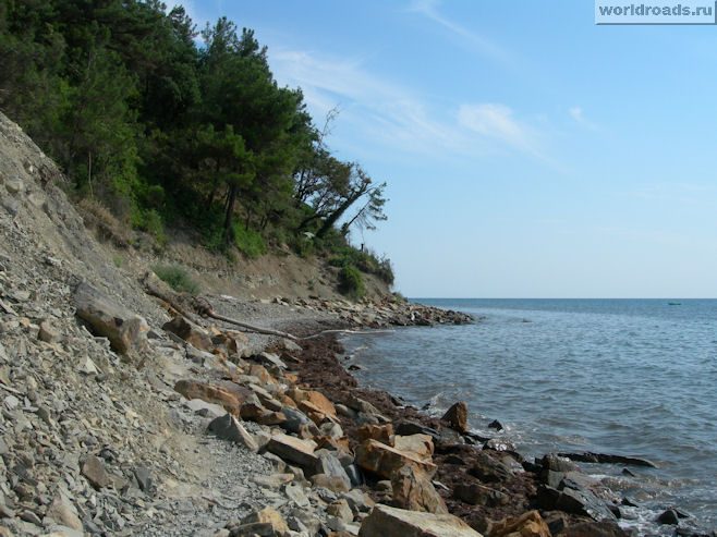Скалы, сосны и море...