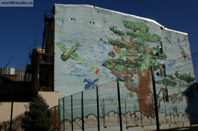 Дерево на Садовой
