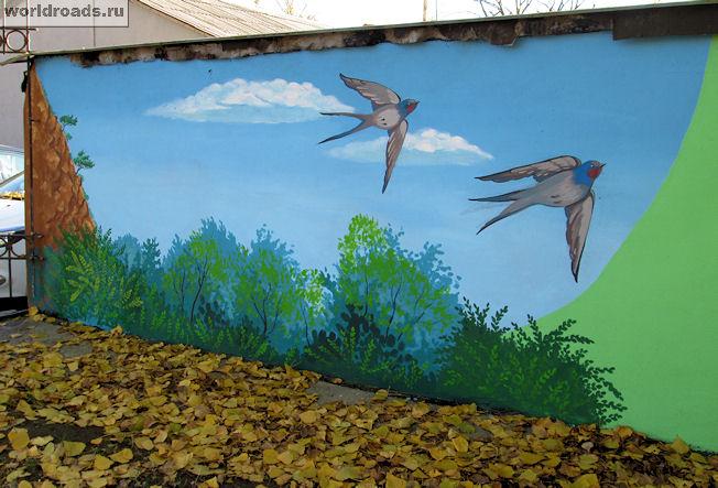 Ласточки граффити