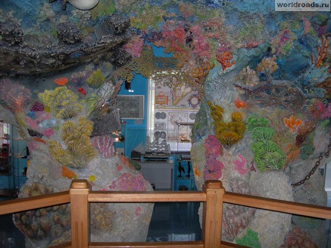 Вид на коралловый риф из каюты капитана Немо