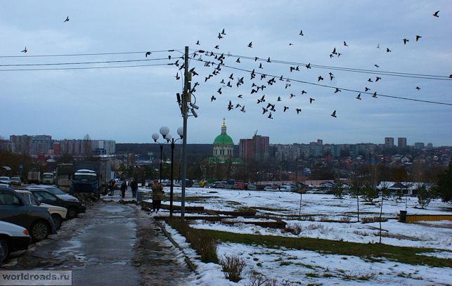 Сурб-Хач и голуби