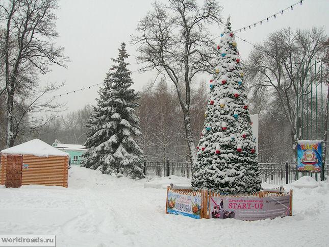 Ёлка в парке Островского