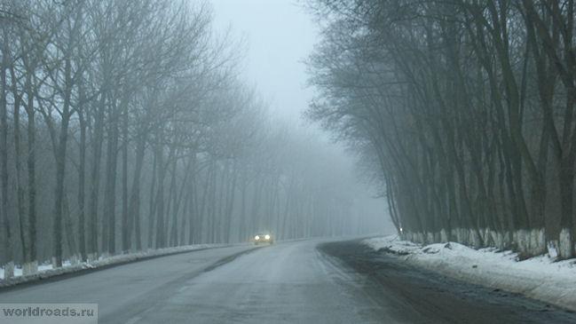 Красный Сулин в тумане