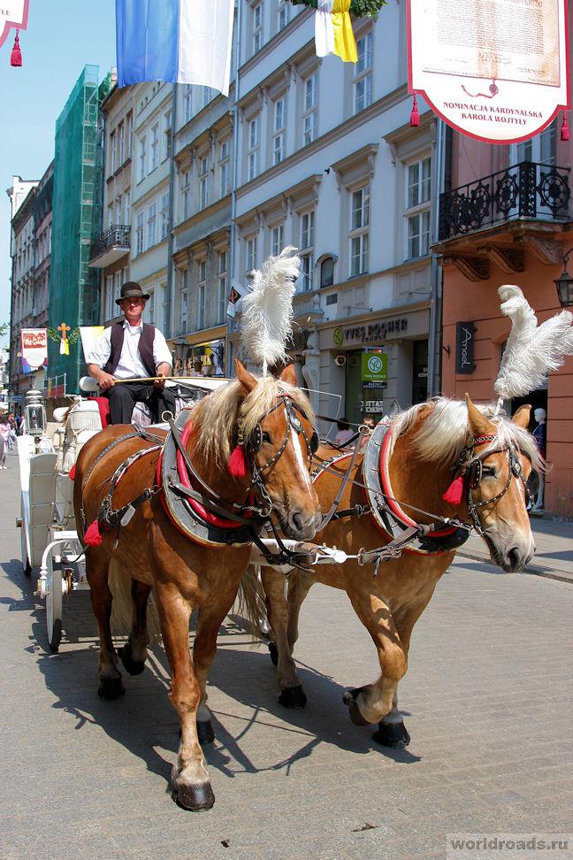 Конные повозки Кракова
