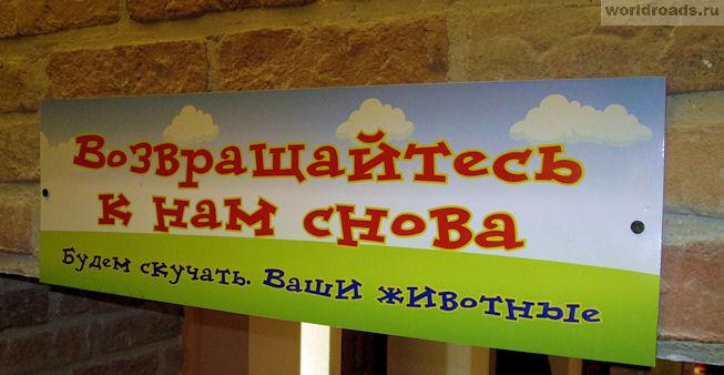 Трогательный зоопарк в Ростове-на-Дону
